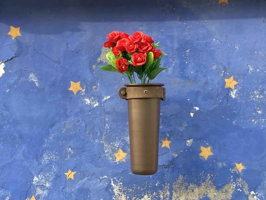 Rosen vor Sternenhimmel
